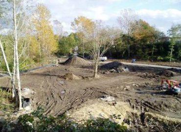 City of Bellingham Park Restoration