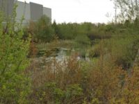 stormwater treatment for hotel development site
